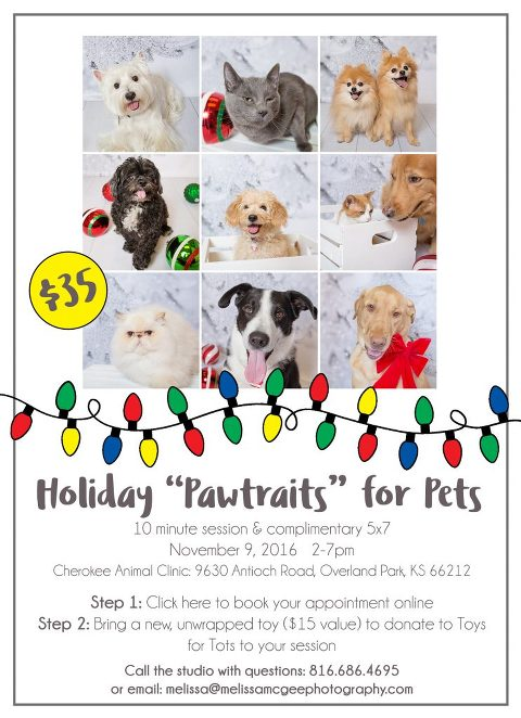"Holiday ""Pawtraits"" for Pets flyer"