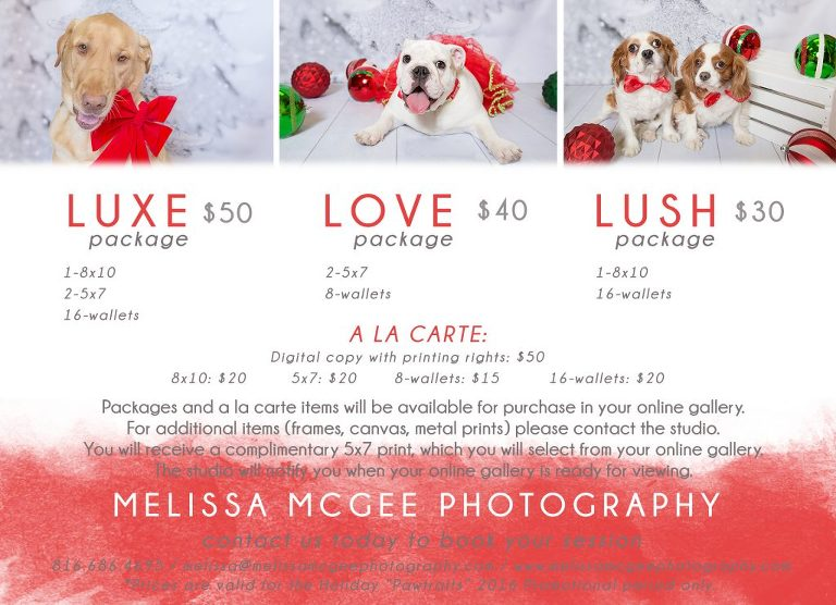 "Holiday ""Pawtraits"" 2016 Pricing Guide"