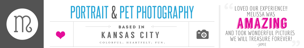 Modern Portrait Photography by Melissa McGee Photography logo