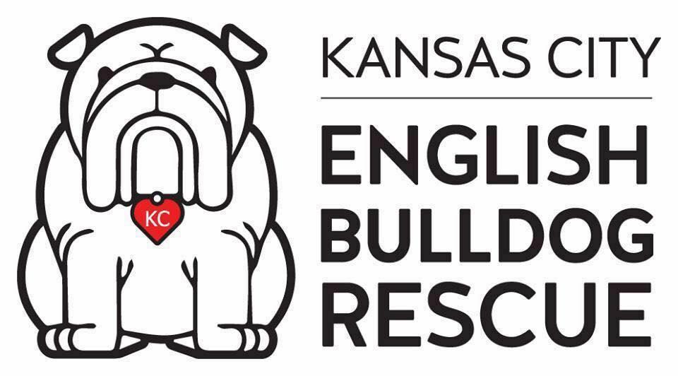 Support Kansas City English Bulldog Rescue