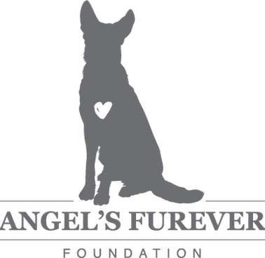 Support Angel's Furever Foundation