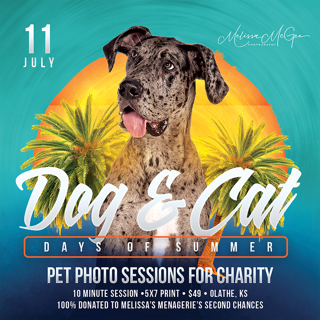 Dog-Days-of-Summer-Kansas-City-2020